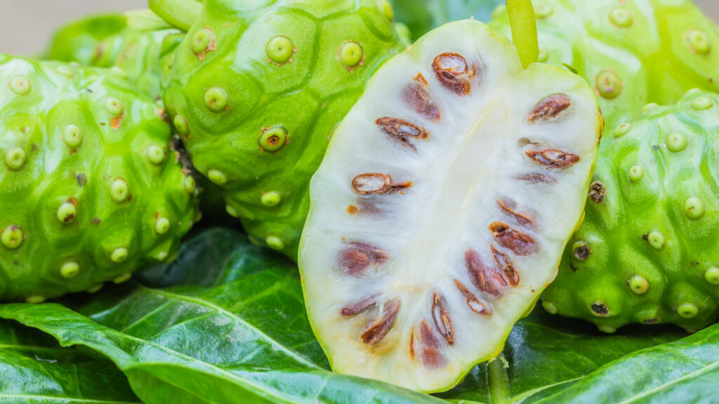 Noni is not just a nutritious food, but also a product with numerous health benefits.